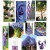 {Weddings} Inspiring Ideas - Bluish Purple Garden Wedding