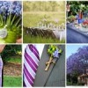 {Weddings/Nesting} Inspiration Board Maker: Are you in the MOOD for some Cool Stuff!